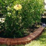 Какой бордюр для сада выбрать