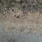 Обзор антисептиков для искусственного камня